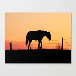 Long Day Canvas Print