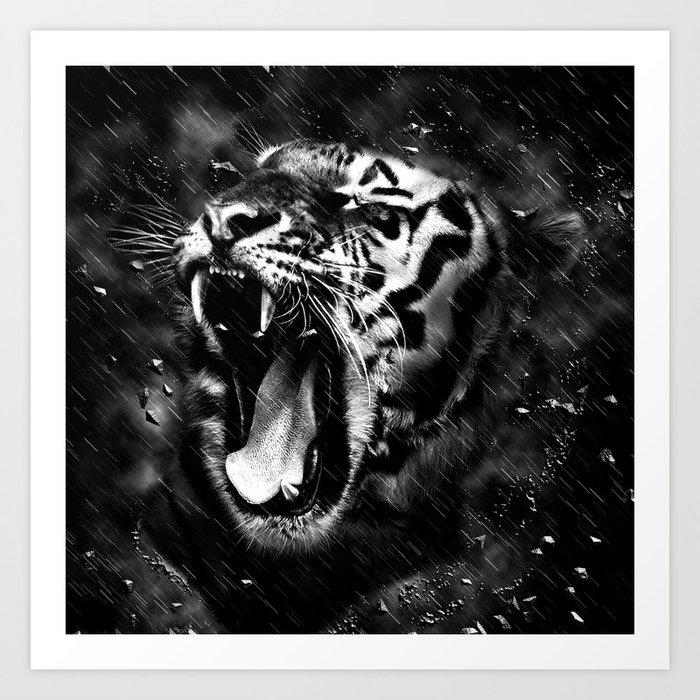 Tiger Head Wildlife Art Print