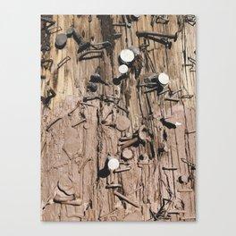 Leftovers Canvas Print