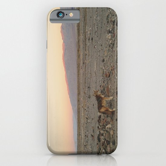 Desert Coyote iPhone & iPod Case