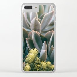 Graptoveria Study #3 Clear iPhone Case