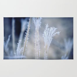 Cold Hoarfrost on the weeds in the winter Rug