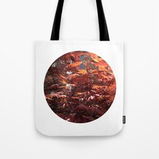 Planetary Bodies - Japanese Maple Tote Bag