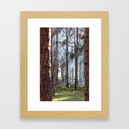 FOREST SUN BEAMS Framed Art Print