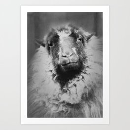 sheep person Art Print