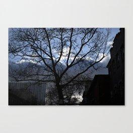 Symmetric Tree Canvas Print