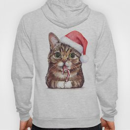 Cat in Santa Hat with Candy Cane Funny Christmas Animal Hoody