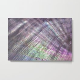 Mother of pearl in a sea shell Metal Print