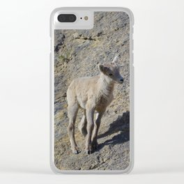 Big horn sheep young in Jasper National Park Clear iPhone Case