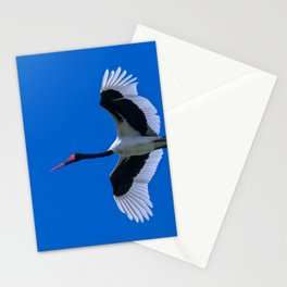 Saddle-billed Stork Stationery Cards