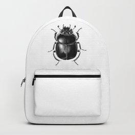 Beetle 13 Backpack