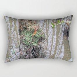 The  Swamp Fairy's Home Rectangular Pillow