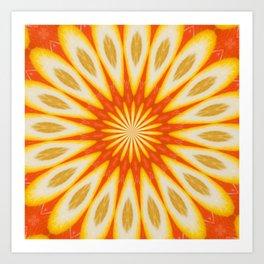 Simply Citrus  Lemon Slices and Blood Orange Art Print