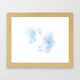 Mystery Rabbit Framed Art Print