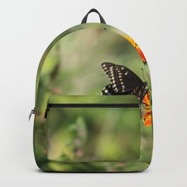 Black Swallowtail In The Garden Backpack