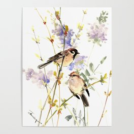 Sparrows and Spring Blossom Poster