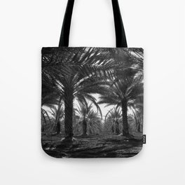 Date palms. Coachella Valley, California Tote Bag