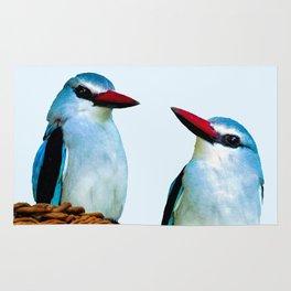 Woodland Kingfisher chit chat Rug