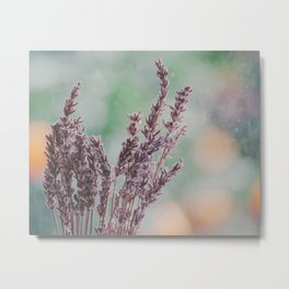 Lavender by the window Metal Print