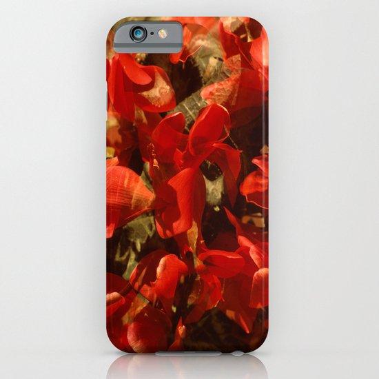 Alpenveilchenmix 1 iPhone & iPod Case