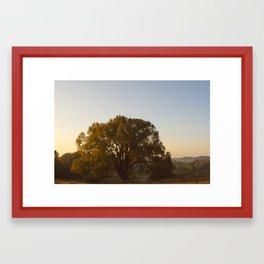 Where the Wild Things Grow Framed Art Print