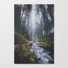 Damped feelings Canvas Print