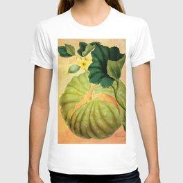 Muskmelon, Vintage Botanical Illustration Collage Art T-shirt