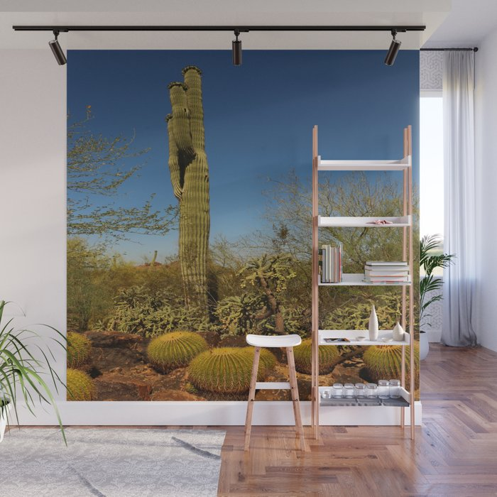 Saguaro and Mother in Law Pillow Wall Mural