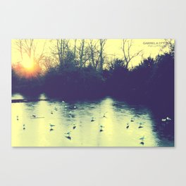 frozen lake Canvas Print
