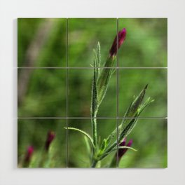 Pink Lipstick Flower Buds Wood Wall Art