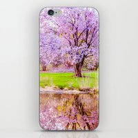 arnold iPhone & iPod Skins featuring Spring at Arnold Arboretum by LudaNayvelt
