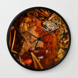 Yosemite Autumn Frog Wall Clock