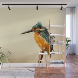 Kingfisher Bird Wall Mural