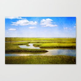 View in Green and Blue from Bass Hole Boardwalk at Grays Beach Yarmouth Port MA Cape Cod Summer Canvas Print
