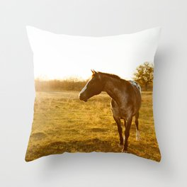 Brown Spotted Horse in the Texas Sunset Throw Pillow