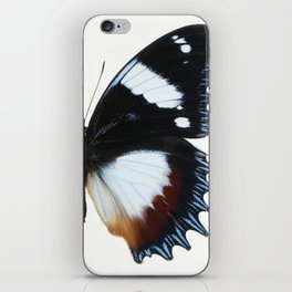 Madagascan Diadem Butterfly iPhone Skin