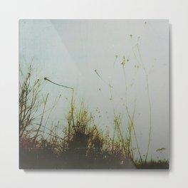 « les herbes folles » Metal Print