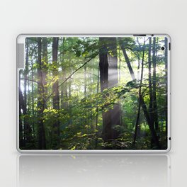 Cabin Light Laptop & iPad Skin