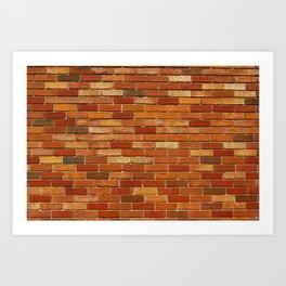 Briques Art Print