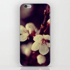 Deep Blossom iPhone & iPod Skin