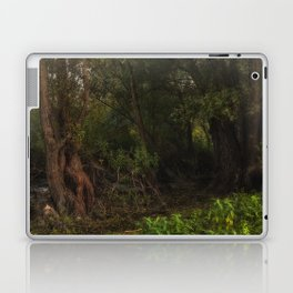 mystic willow Laptop & iPad Skin