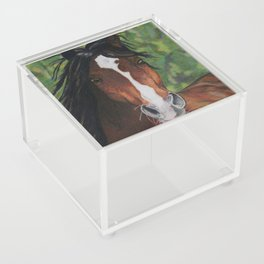 Shoki's Spirit Acrylic Box