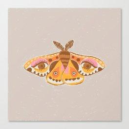 Moth Eyes Canvas Print