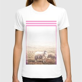 Sheep - pink graphic T-shirt