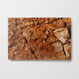 Wood - Texture and Colors Metal Print