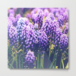 Vintage purple flowers Metal Print