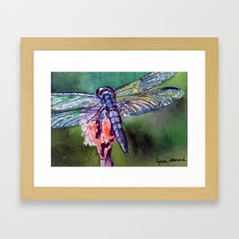 Blue and Green Dragonfly Framed Art Print