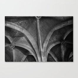 Narbonne ceilings Canvas Print