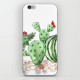 Cactus watercolor illustration iPhone Skin