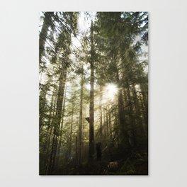 Washington Light Rays Canvas Print